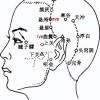 Le point Xuan Lu du méridien de la vésicule biliaire (5VB)