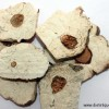 Le champignon Fu Ling
