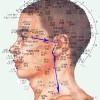 Le 3ème point du méridien de la vésicule biliaire (3VB)