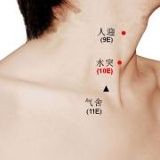 Le point Shui Tu du méridien de l'estomac (10E)