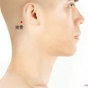 Le point Wan Gu du méridien de la vésicule biliaire (12VB)