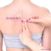 Le point Xin Shu du méridien de la vessie (15V)