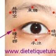 Le point Tong Zi Liao du méridien de la vésicule biliaire (1VB)