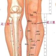 Le point Zu San Li du méridien de l'estomac (36E)