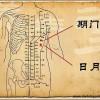 Le point Ri Yue du méridien de la vésicule biliaire (24VB)