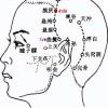 Le point Han Yan du méridien de la vésicule biliaire (4VB)