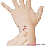 Le point Yang Lao du méridien de l'intestin grêle (6IG)