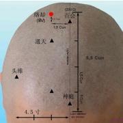 Le point Luo Que du méridien de la vessie (8V)