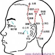 Le point Tian Chong du méridien de la vésicule biliaire (9VB)