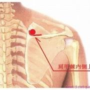 Le point Qu Yuan du méridien de l'intestin grêle (13IG)