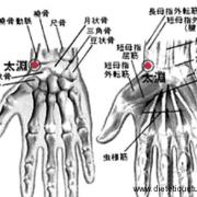 Le point Tai Yuan du méridien du poumon (9P)