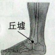 Le point Qiu Xu du méridien de la vésicule biliaire (40VB)
