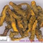 Le rhizome de savoyane (Huang Lian)