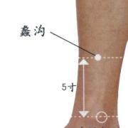 Le point Li Gou du méridien du foie (5F)