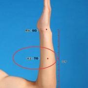 Le point Zhi Zheng du méridien de l'intestin grêle (7IG)