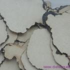 Le sclérote de polypori Umbellati (Zhu Ling)