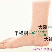 Le point Da Zhong du méridien des reins (4R)