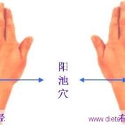 Le point Yang Chi du méridien du Trois Foyers (4TF)
