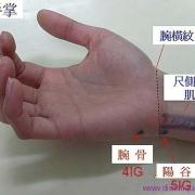 Le point Wan Gu du méridien de l'intestin grêle (4IG)