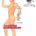 Le méridien du triple réchauffeur (San Jiao)