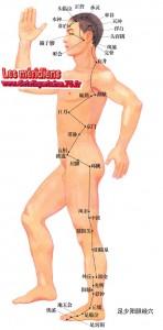Liste des meridiens de la médecine chinoise