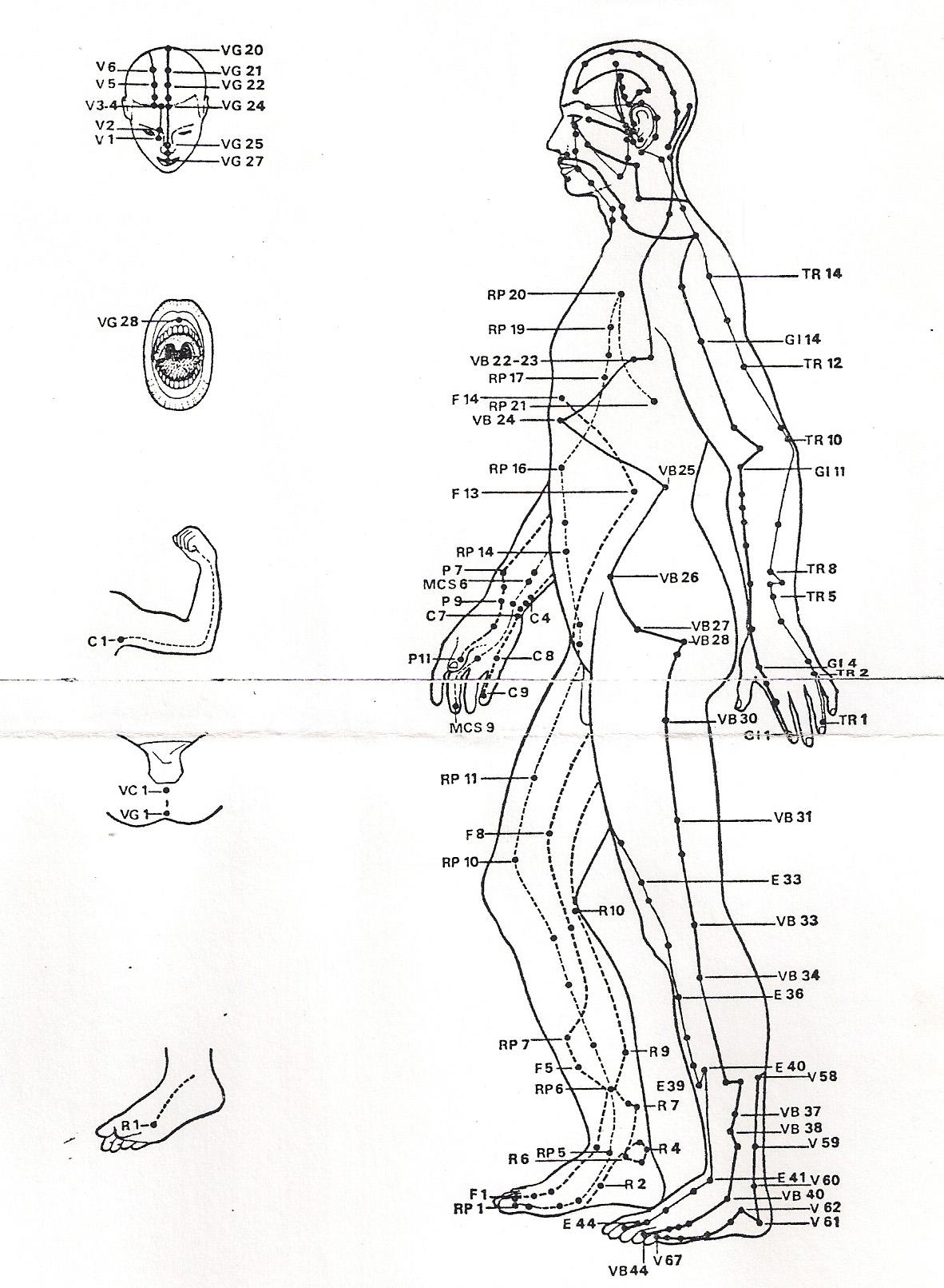Les canaux, méridiens énergétiques, en médecine traditionnelle chinoise