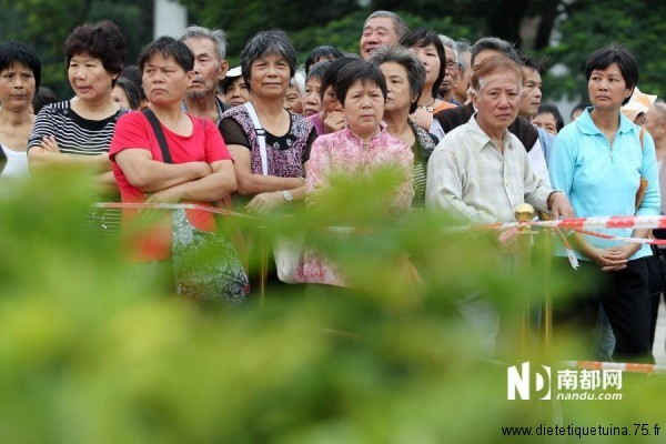 Distribution d'azalées gratuite en Chine
