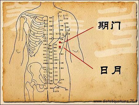24ème point d'acupuncture du méridien de la vésicule biliaire