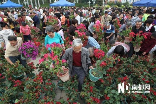 Les fleurs emportées par les chinois