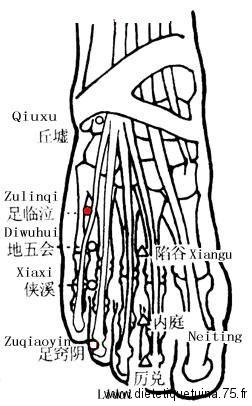 Medecine chinoise et les points d'acupunctures