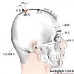 Le point Tong Tian du méridien de la vessie (7V)