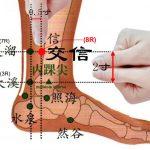 Le point Jiao Xin du méridien des reins (8R)