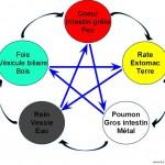 Mise en pratique des 2 lois fondamentales des cinq éléments