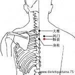 Le point Fei Shu du méridien de la vessie (13V)