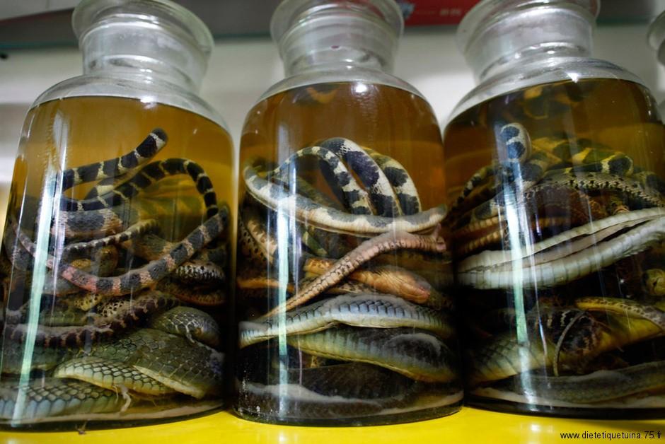 Serpents plongés dans l'alcool