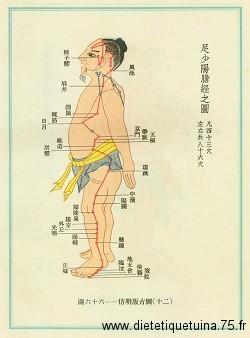 Méridien de la vésicule biliaire version ancienne Chine