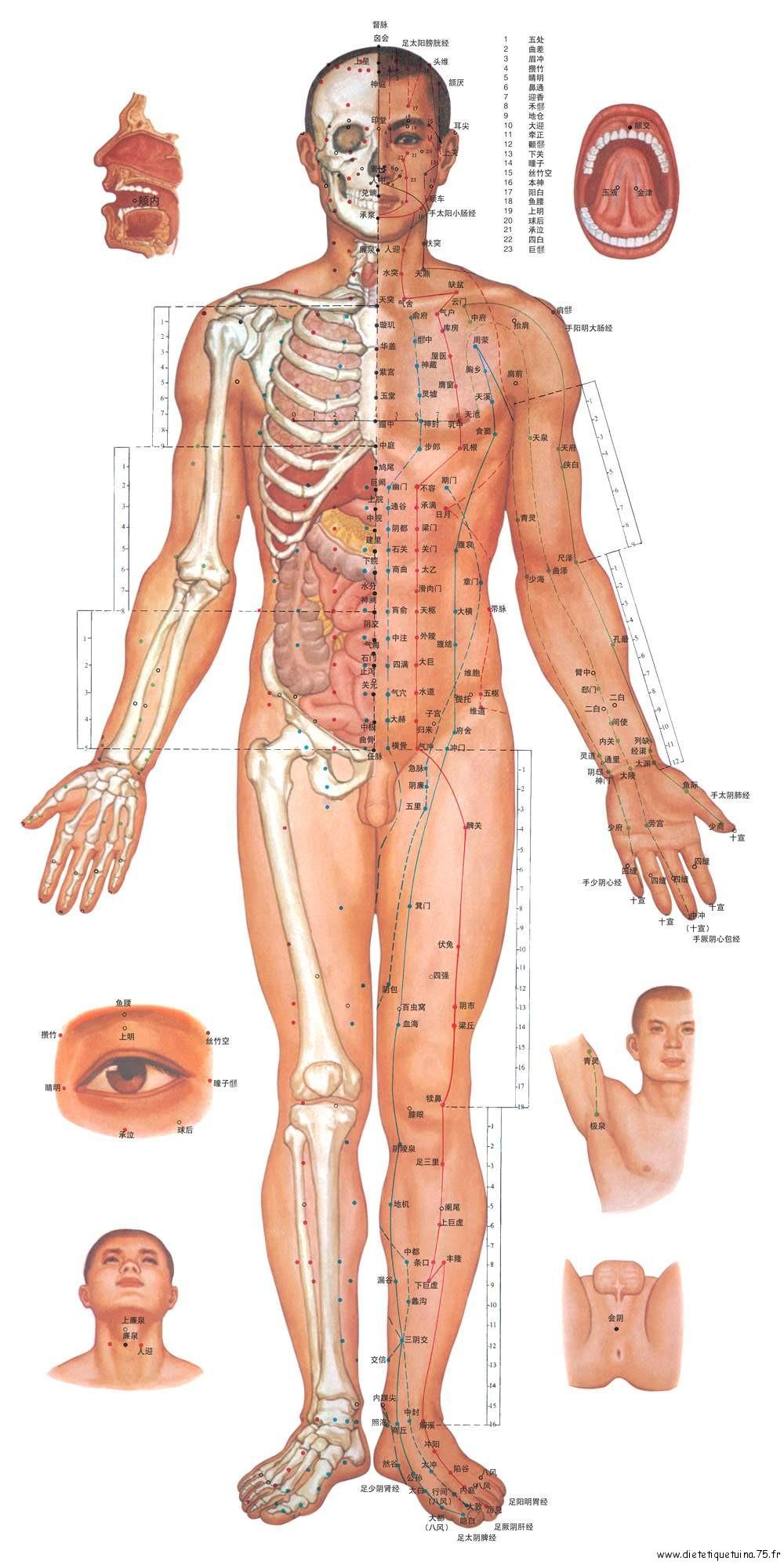 Méridiens et mesures en Cun, corps de face
