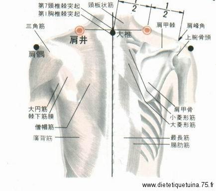 21ème point du méridien de la vésicule biliaire