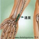 Le point Tong Li du méridien du coeur (5C)