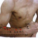 Points du méridien du gros intestin