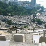 Les perturbateurs des cimetières chinois