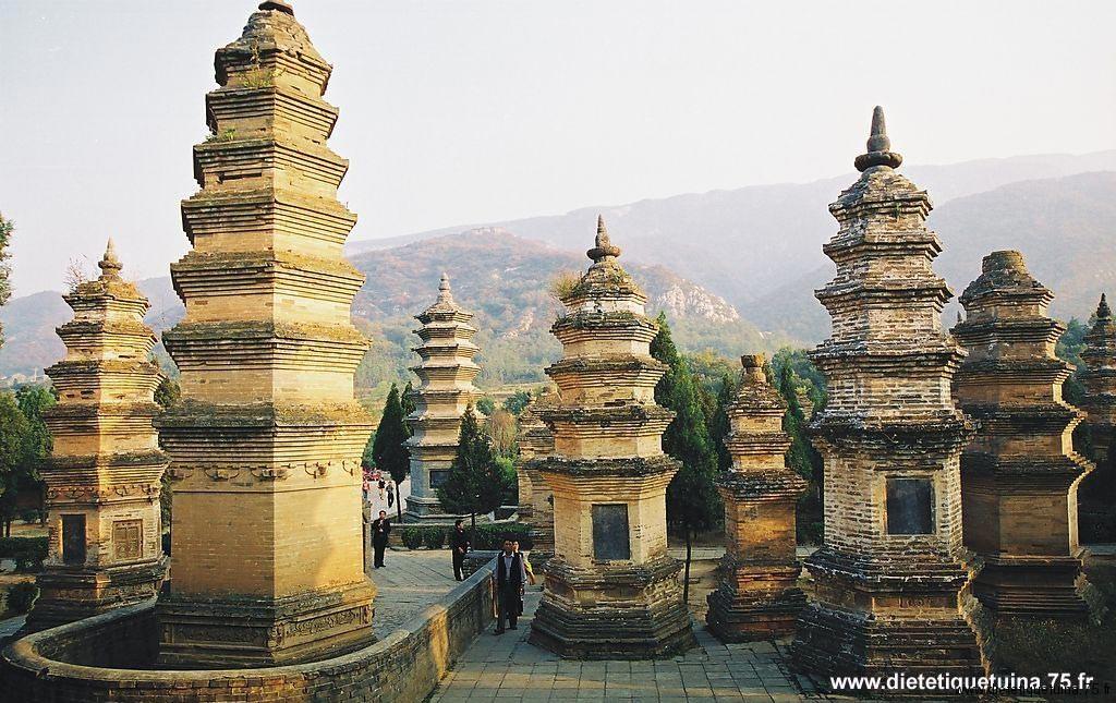Voyage en chine: forêt des pagodes
