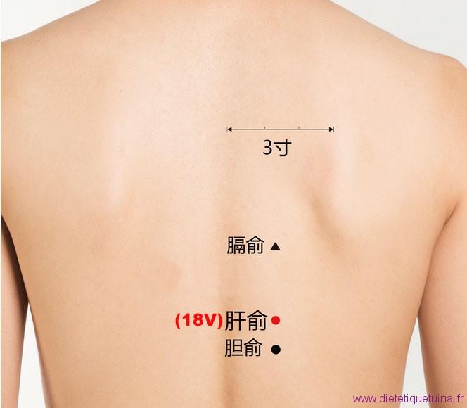 Point Gan Shu (18V)