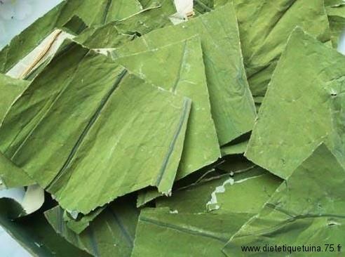 He ye les feuilles de lotus séchèes