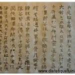 Les 5 points Shu antiques et la théorie des 5 éléments