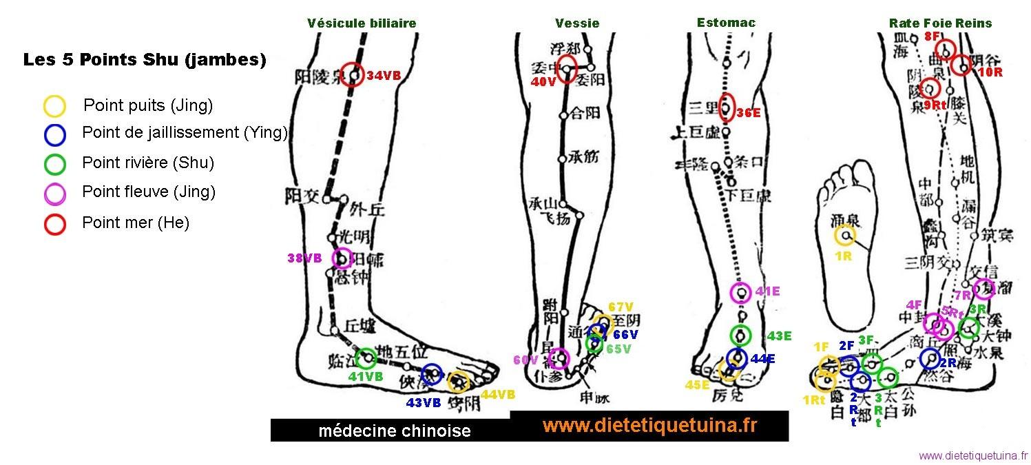 Points Shu Antique des jambes