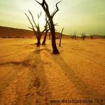 L'énergie perverse externe sécheresse