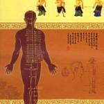Le systeme des meridiens en médecine chinoise