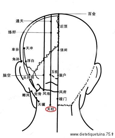 Point d'acupuncture de la médecine chinoise