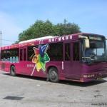 Infos pratique Chine: les bus des villes